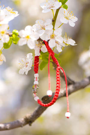 fertility emblem: Red bracelet hanging in a blooming branch Stock Photo