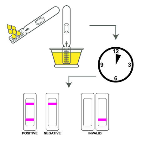 Pregnancy test instructions with text and drawings. Stock Illustratie