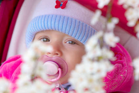 Small baby portrait among white spring flowers