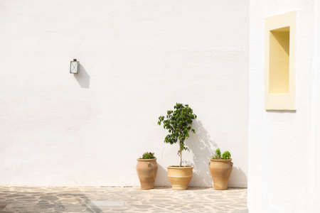 White wall with electric lamp and three flower pots Stock fotó