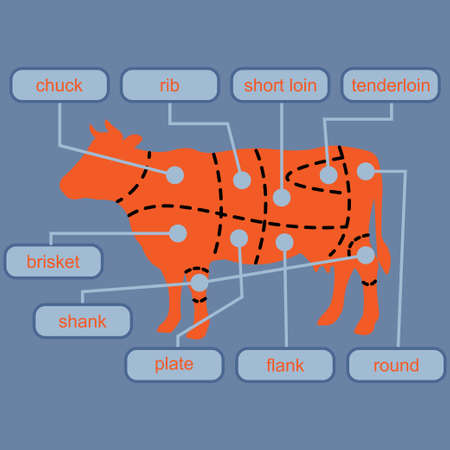 Cutting beef meat or steak cuts diagram chart