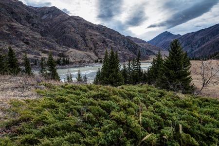 The Katun River among the mountains