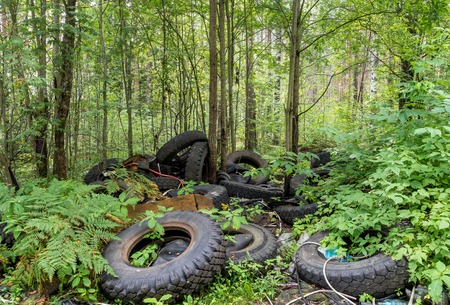 Tires in the forest Stock Photo