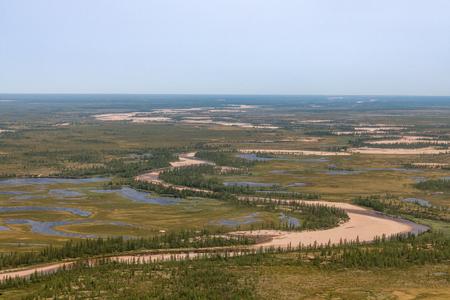 Rivers, swamps of Siberia