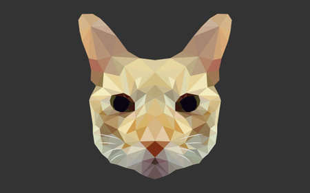 front of the eye: geometric cat polygon vector Illustration