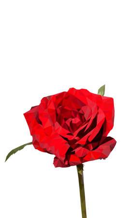 geometric rose 向量圖像
