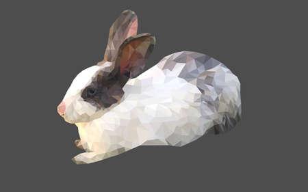 geometric rabbit polygon vector
