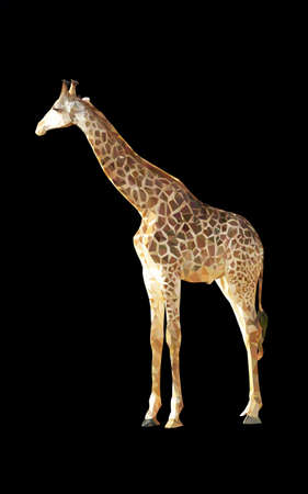 geometric giraffe vector polygon