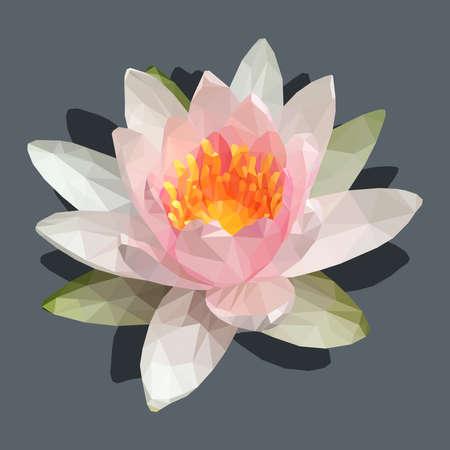 Lotus flower polygon