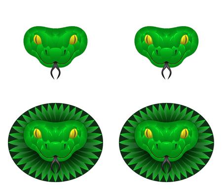 Green snake head, vector illustration of snake head.