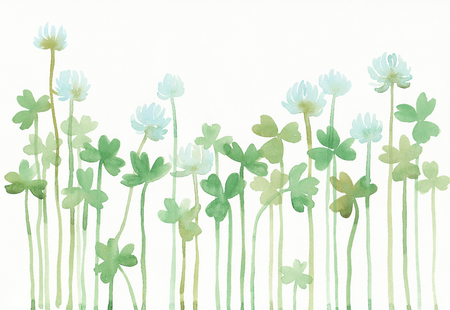 clovers: Watercolor illustration of clovers. Stock Photo