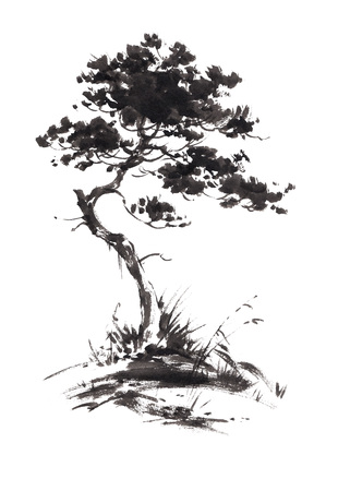 gohua: Ink illustration of growing pine tree with some grass. Sumi-e, u-sin, gohua painting style. Silhouette made up of black brush strokes isolated on white background.