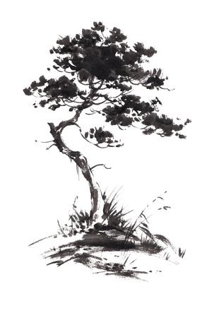 Inktillustratie van het kweken van pijnboomboom met wat gras. Sumi-e, u-sin, gohua schilderstijl. Silhouet dat uit zwarte borstelslagen wordt samengesteld die op witte achtergrond worden geïsoleerd.