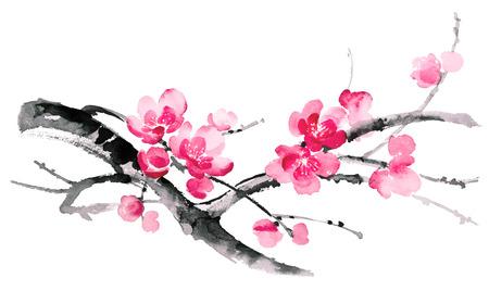 桜の花の枝のイラストをインクします。スミ-e、u 罪、gohua 絵画スタイル。シルエットは、白い背景で隔離のブラシ ストロークから成っています。