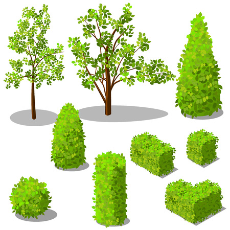 Vector isometric trees and decorative bushes Illustration