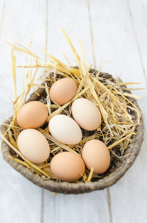 underlay: Brown eggs on a straw bedding in a wicker basket with white wooden background