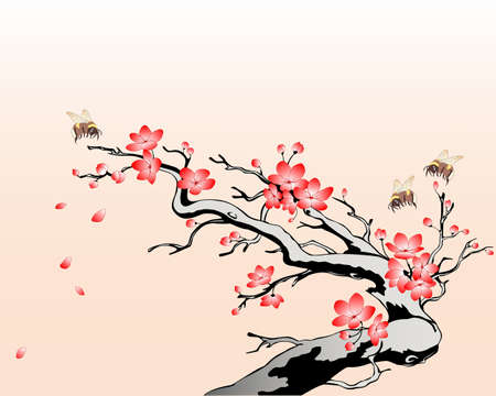 japanese garden: flowering cherry branch with flying bees