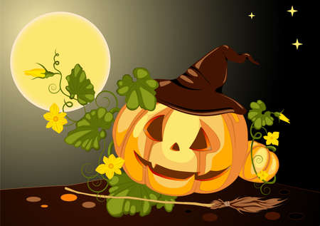 besom: halloween pumpkin with witchs hat at night Illustration