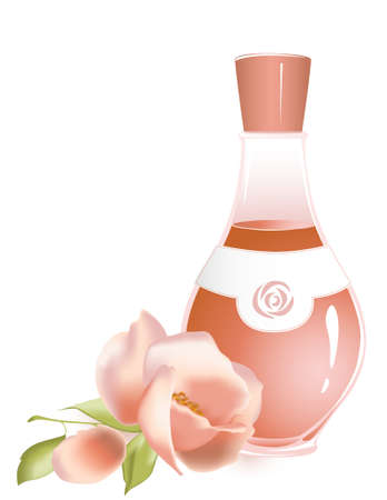 fragrances: rose oil and flower of rose on a white background