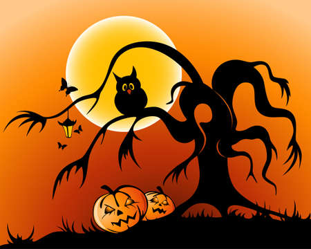 moon  owl  silhouette: halloween background with pumpkin, owl and silhouette of tree by moon night