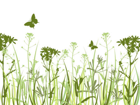 Background with green grass, camomile flowers  and butterfly Ilustração