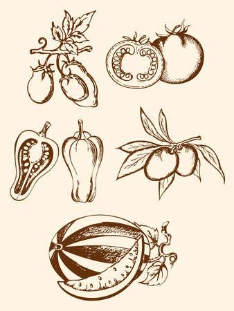 set of hand-drawn vintage vegetable icons