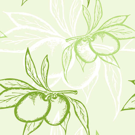 floral seamless pattern with green olive  Vector