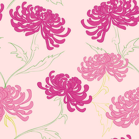 aster: hand drawing  seamless pattern with flowers  Illustration