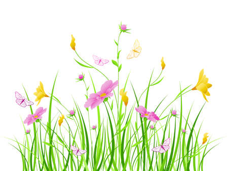 cosmos:   floral background with pink and yellow flowers