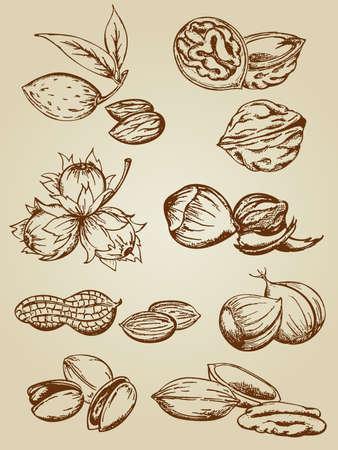 avellanas: conjunto de diversos frutos secos en estilo retro