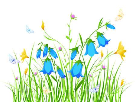 bellflower: floral background with blue and yellow flowers Illustration