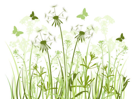 floral background with green grass,dandelions and butterflies