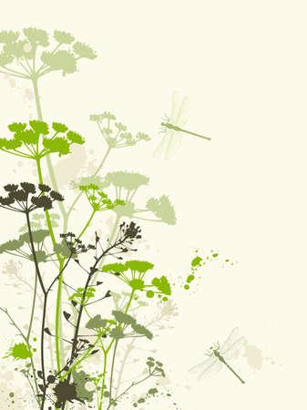 grunge floral background with dragonfly Illustration