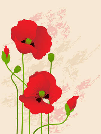 floral background with red poppies Vector