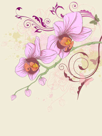hand drawn floral background with orchid and ornament