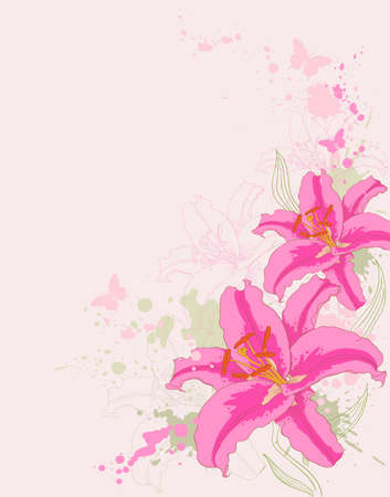 hand drawn vector floral background with pink  lily Stock Vector - 9129443