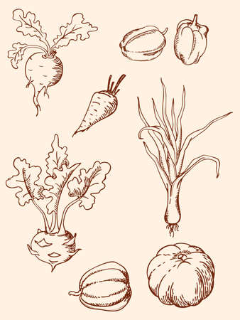 leeks: set of hand drawn vegetables in retro style