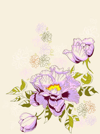 hand drawn vector floral background with peony Illustration
