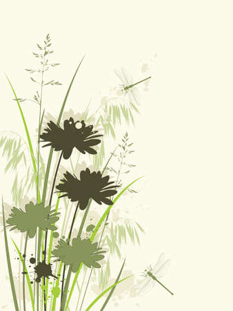 oat field: vector green floral background with chamomile Illustration