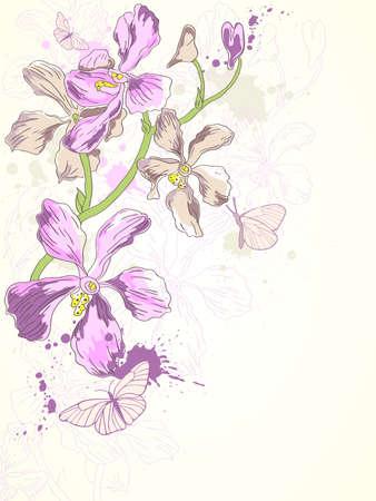 vector background with hand drawn violet orchids Ilustração