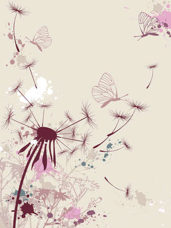 chamomiles:  floral background with dandelion and butterfly Illustration