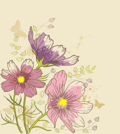 cosmos: vintage vector floral background with cosmos flowers