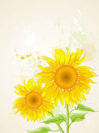 hand drawn vector floral background with sunflower Vector