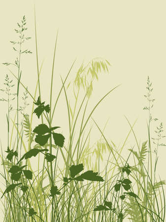 Vector  floral background with green grass Vector