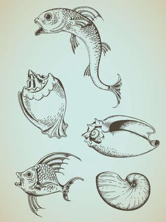 saltwater fish: mano d'epoca tratte vettore pesci e conchiglie marine