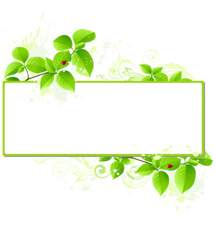 herbal background:  banner with leaves and floral ornament Illustration