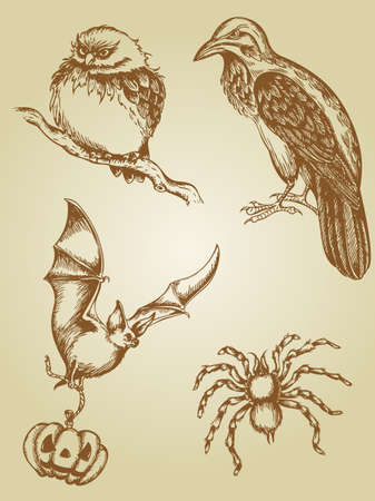 set of vintage hand drawn animals Vector