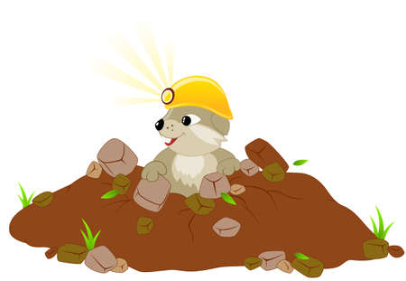 marmot: Cute groundhog day background