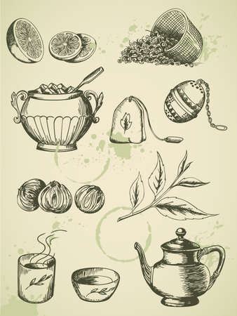 green tea leaf: set of vintage hand drawn tea icons