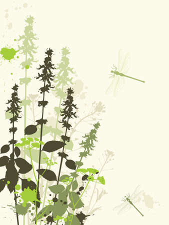 Green grunge vector background with wildflowers and dragonfly Illustration